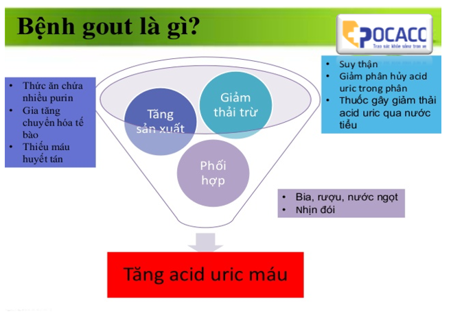 ai-co-the-bi-benh-gut-nguyen-nhan-benh-gut-la-gi