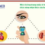[Chuyên mục bàn luận] Mức đường trong máu sẽ tác động đến các chức năng nhận thức của bạn như thế nào?
