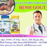 Thuốc trị bệnh gout hiệu quả-địa chỉ tin cậy cho bệnh nhân gout