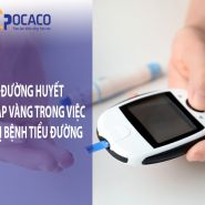 Đo lượng đường trong máu: Phương pháp giúp bạn điều trị bệnh tiểu đường hiệu quả hơn