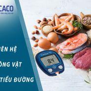 Chất béo ảnh hưởng đến bệnh tiểu đường như thế nào?