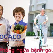 Hiệu quả hơn với phương pháp phòng ngừa bệnh gout - Sử dụng phổ biến nhất hiện nay