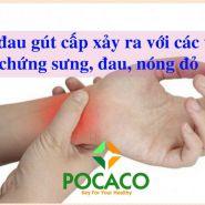 Các nguyên nhân và triệu chứng bệnh gout theo từng giai đoạn