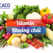 6 loại vitamin và khoáng chất cơ bản cho bệnh tiểu đường