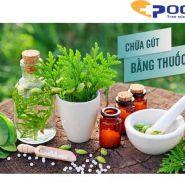 Phương pháp sử dụng cây thuốc Nam điều trị bệnh gout - Liệu có mang lại hiệu quả?