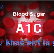 Sự khác biệt giữa Hemoglobin A1c và Đường trong máu là gì?