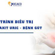 Điều trị axit uric cao và bệnh gút trong một bài viết