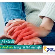 Làm thế nào để Giảm Acid uric trong cơ thể của bạn | 8 biện pháp khắc phục tại nhà cho bệnh gút & tăng axit uric máu