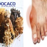 Nguyên tắc và phương pháp điều trị bệnh gout bằng thuốc gia truyền- hiệu quả+AN TOÀN