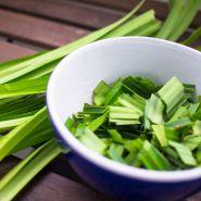 Điều trị bệnh tiểu đường bằng lá dứa – cây dại chữa bệnh nan y?