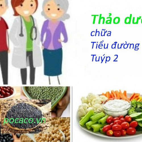Chữa trị bệnh tiểu đường tuýp 2 bằng thảo dược